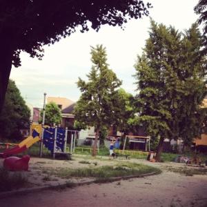 20120816-115007.jpg